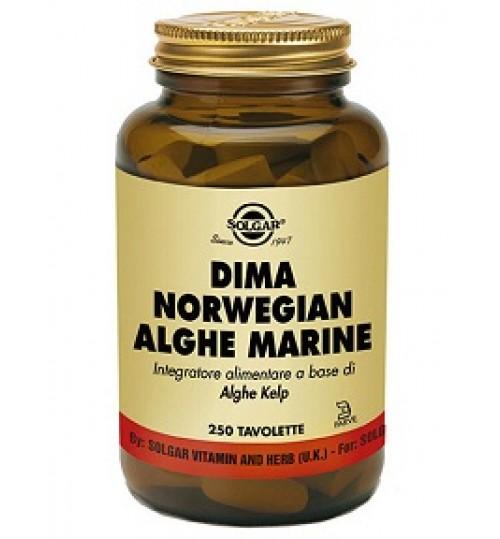 Dima Norwegian Alghe Ma 250tav